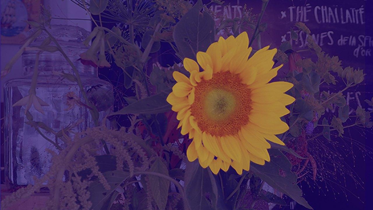 #musiquebleue – Soleil Soleil